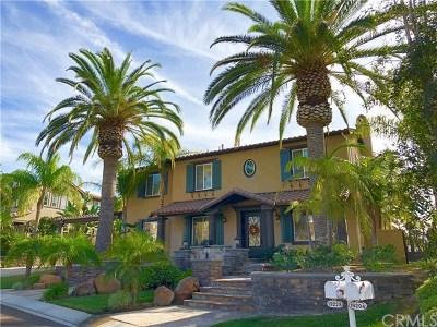 Yorba Linda Single Family Home For Sale: 19228 Lipizzan Lane
