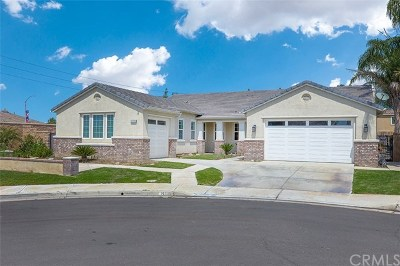 Eastvale Single Family Home For Sale: 14196 Creek Sand Court