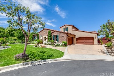 Chino Hills Single Family Home For Sale: 2980 Aviano Court