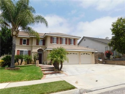 Chino Hills Single Family Home For Sale: 2854 Hawk Road