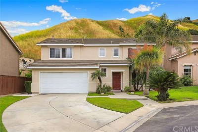 Chino Hills Single Family Home For Sale: 16543 Misty Hill Drive