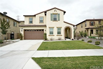 Chino Hills Single Family Home For Sale: 17076 Branco Drive