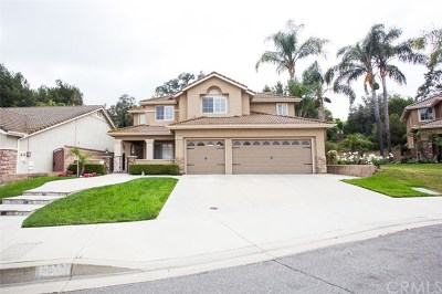 Chino Hills Single Family Home For Sale: 16352 Brancusi Lane