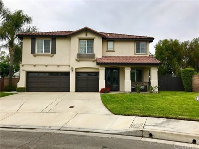 Chino Hills Single Family Home For Sale: 5575 Veronese Drive