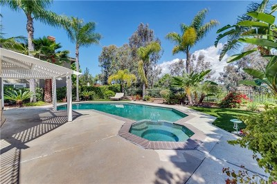 Laguna Niguel Single Family Home For Sale: 28571 Springfield Drive