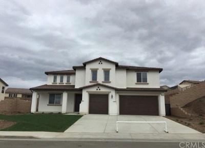 Riverside Single Family Home For Sale: 9454 Alta Cresta Avenue