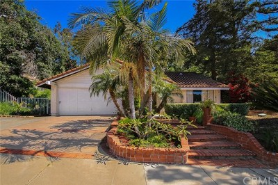 Diamond Bar Single Family Home For Sale: 1532 Kiowa Crest Drive