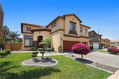Eastvale Single Family Home For Sale: 6833 Winterberry Way