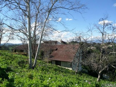 Diamond Bar Single Family Home For Sale: 2373 Indian Creek Road