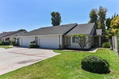 Placentia Single Family Home For Sale: 2363 Waco Avenue #A & B