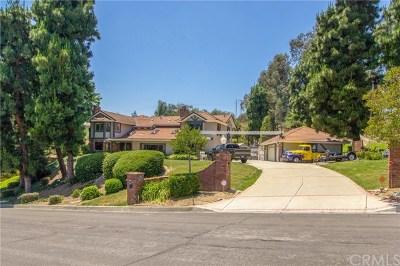 Chino Hills Single Family Home For Sale: 16112 Medlar Lane