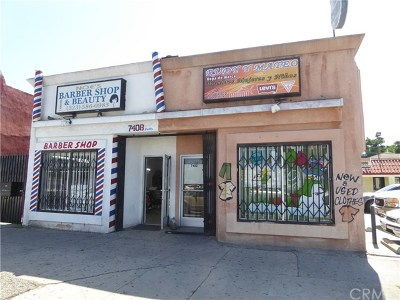 Los Angeles Commercial For Sale: 7410 S Central Avenue