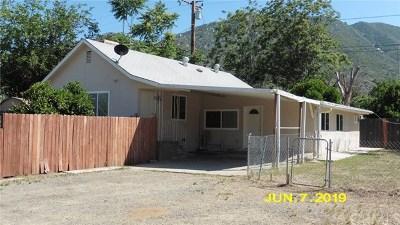 Lake Elsinore Single Family Home For Sale: 17663 Raley Avenue
