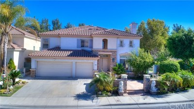 Rowland Heights Single Family Home For Sale: 18902 Amberly Place