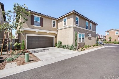 Eastvale Single Family Home For Sale: 5985 Silveira Street