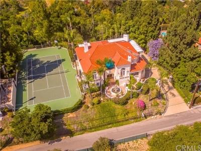Hacienda Heights Single Family Home For Sale: 14251 Skyline Drive