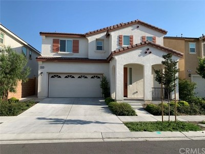 Eastvale Single Family Home For Sale: 12867 Meridian Street