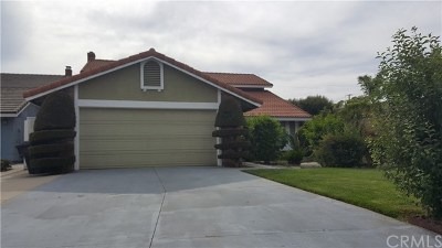 Anaheim Single Family Home For Sale: 1221 S Masters Lane