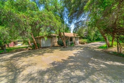 Norco Single Family Home For Sale: 2434 Corona Avenue