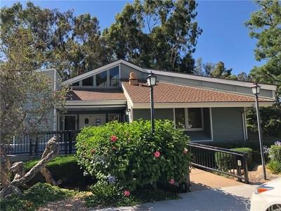 Hacienda Heights Condo/Townhouse For Sale: 16242 Sierra Pass Way