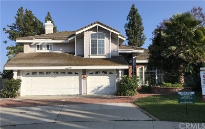 Walnut Single Family Home For Sale: 350 Windemere Lane