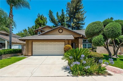 Chino Hills Single Family Home For Sale: 3594 Hillsdale Ranch Road