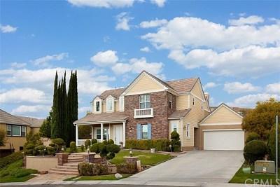 Yorba Linda Single Family Home For Sale: 19355 Steeplechase Way