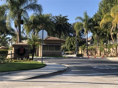 Anaheim Hills Single Family Home For Sale: 746 S Canyon Mist Lane