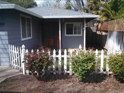Chico Single Family Home For Sale: 904 W 11th Avenue