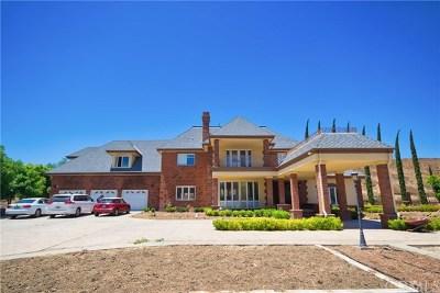 Murrieta, Temecula Single Family Home For Sale: 36540 De Portola Road