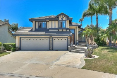 Chino Hills Single Family Home For Sale: 3035 Sundance Court