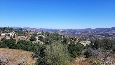 Fallbrook Residential Lots & Land For Sale: 1052 N Stage Coach Lane