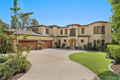 Chino Hills Single Family Home For Sale: 3175 Payne Ranch Road