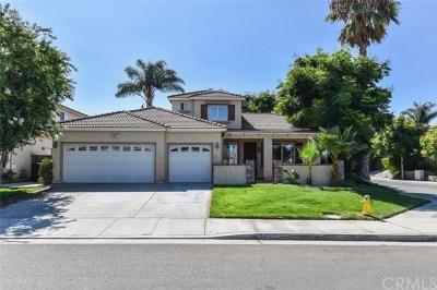 Eastvale Single Family Home For Sale: 14135 Lemon Valley Avenue