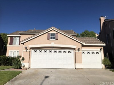 Corona Single Family Home For Sale: 847 Montague Drive