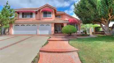 Chino Hills Single Family Home For Sale: 13511 Portofino Court