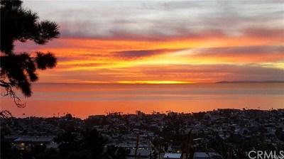 San Clemente Single Family Home For Sale: 325 E Avenida Cordoba