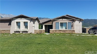 Rancho Cucamonga Single Family Home For Sale: 13546 Brittle Brush Court