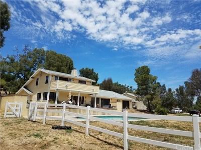 Temecula Single Family Home For Sale: 30175 De Portola Road
