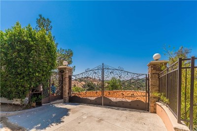 Sunland Single Family Home For Sale: 10525 Mary Bell Avenue
