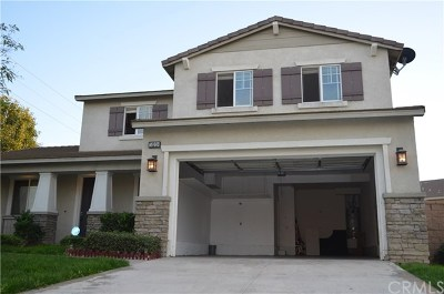Eastvale Single Family Home For Sale: 14209 Goose Street