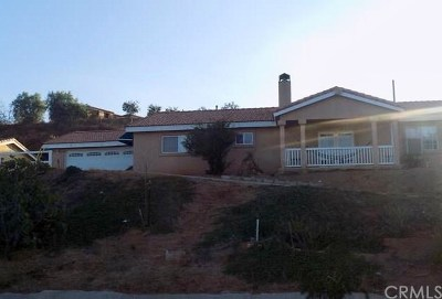 Perris Single Family Home For Sale: 21400 Salter Road