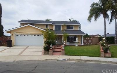 Chino Single Family Home For Sale: 13450 San Luis Avenue
