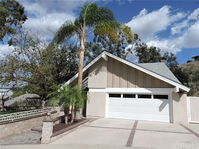 Orange Single Family Home For Sale: 1023 N Los Altos Place