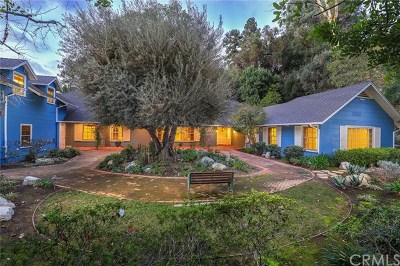 Pasadena Single Family Home For Sale: 294 California