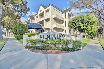 Pasadena Condo/Townhouse For Sale: 300 N El Molino Avenue #120