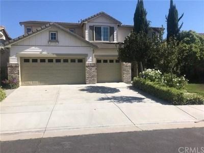 Temecula Single Family Home For Sale: 32151 Calle Balareza