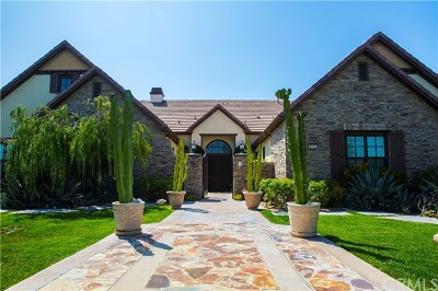 Yorba Linda Single Family Home For Sale: 4195 Hidden Oaks Drive