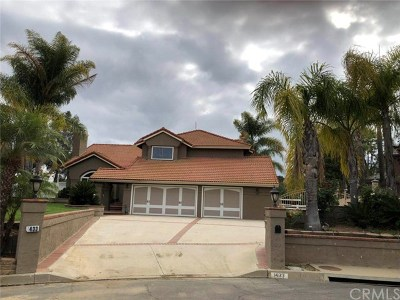 Chino Hills Single Family Home For Sale: 1433 Canyon Oaks Crossing