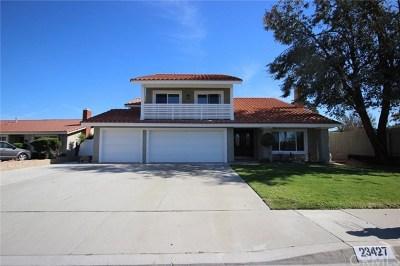 Diamond Bar Single Family Home For Sale: 23427 Clayhorn Drive